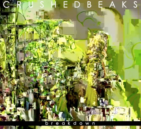 Crushed Beaks - Breakdown