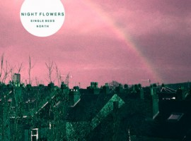 Nigh Flowers - North